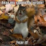 DarwinSquirrel