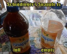 SchrodingerCaption